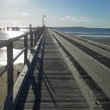 Week 12: K'gari (Fraser Island) I