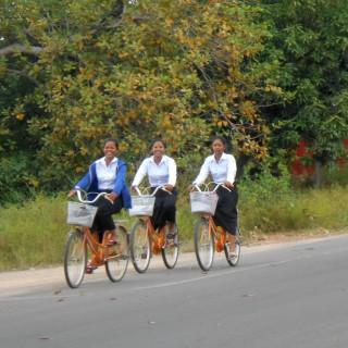 Week 31: Siem Reap