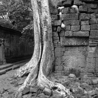 Week 31: Angkor Archaeological Park BW